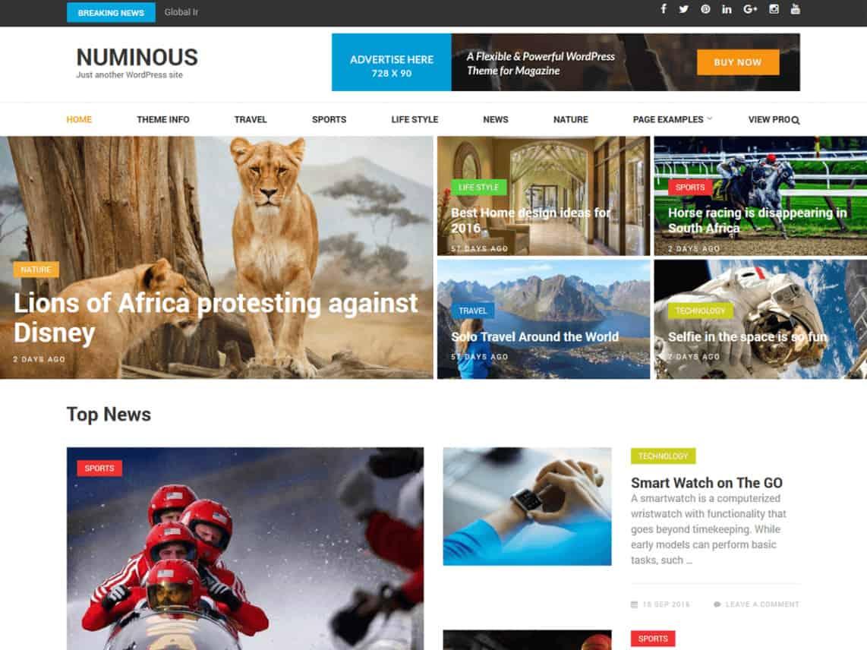 Numinous PRO WordPress theme