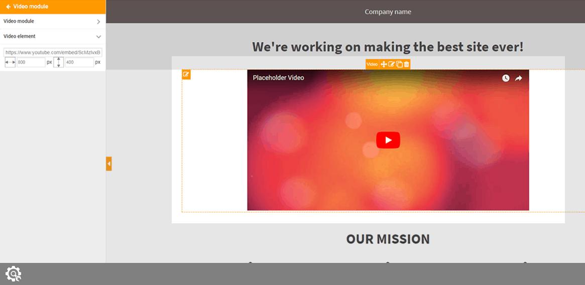 Video module