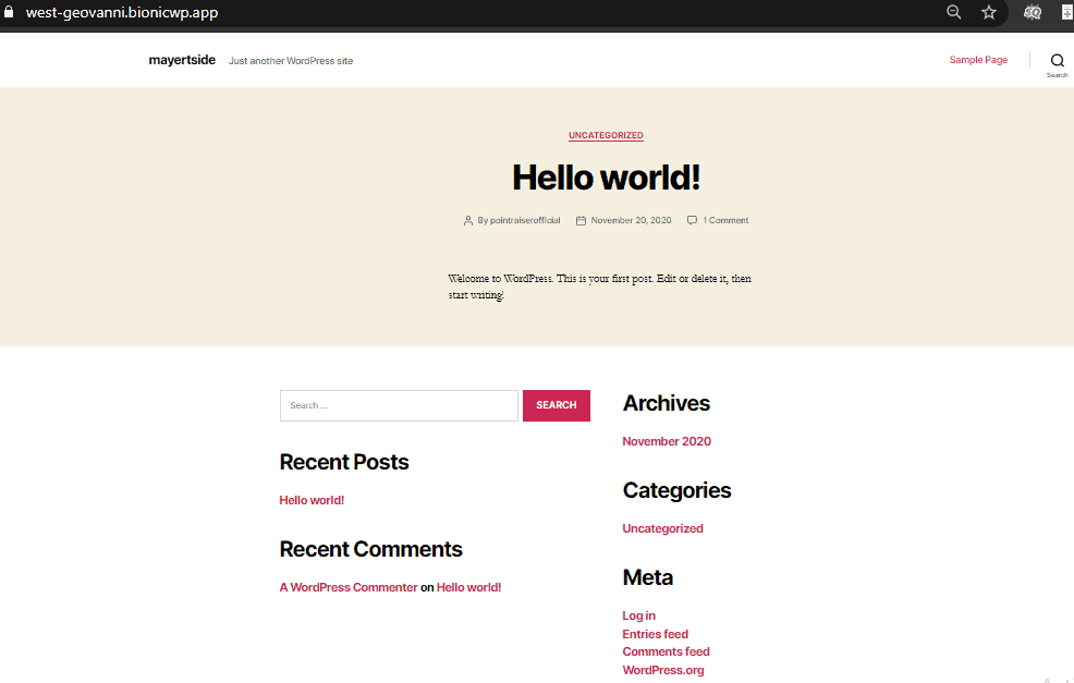 BionicWP WP website