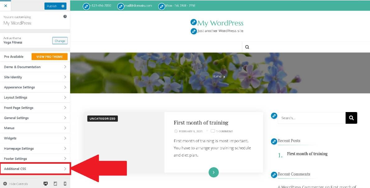 WordPress Additional CSS option