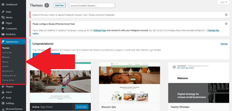WordPress Appearance tab